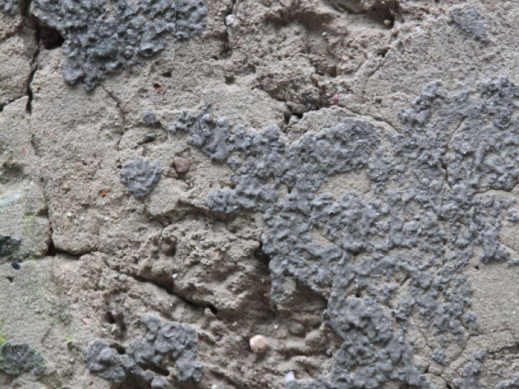 Стена после очищения мойкой высокого давления